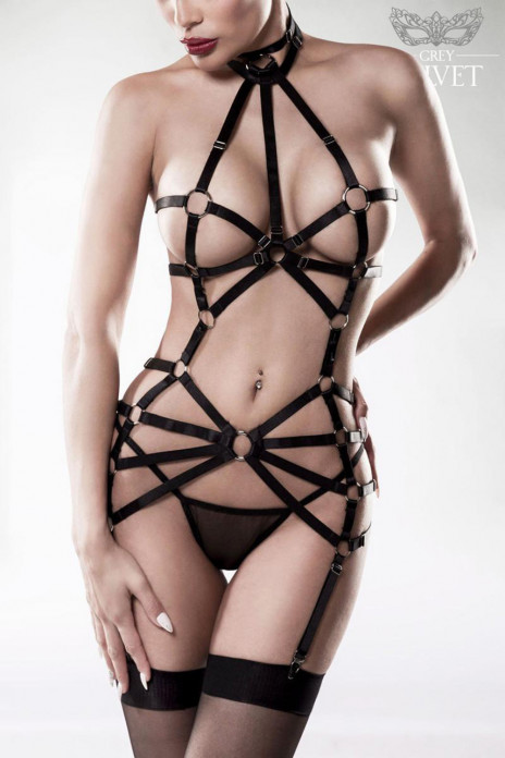 Exclusive 2pc Harness Set